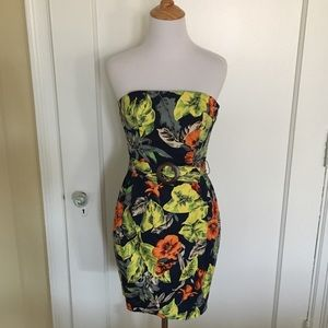 Beautiful French Connection Dress